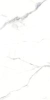 卡拉拉 ?Carrara